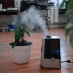 This Is The Best Room To Put An Air Purifier - Air purifier example