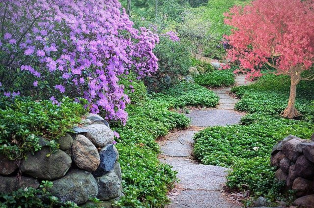 10 Things To Consider Before Building A Garden Path - Colorful Garden Path