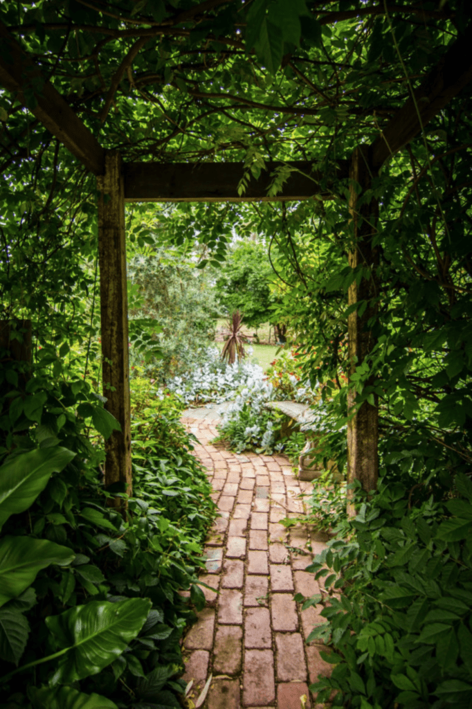 10 Things To Consider Before Building A Garden Path - Graden path made out of bricks