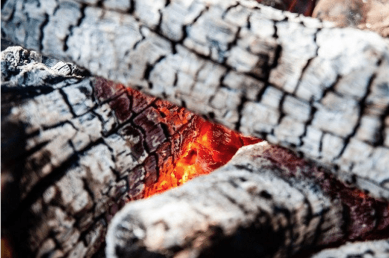 Is Firewood Ash Good for Your Garden? - Burning Firewood