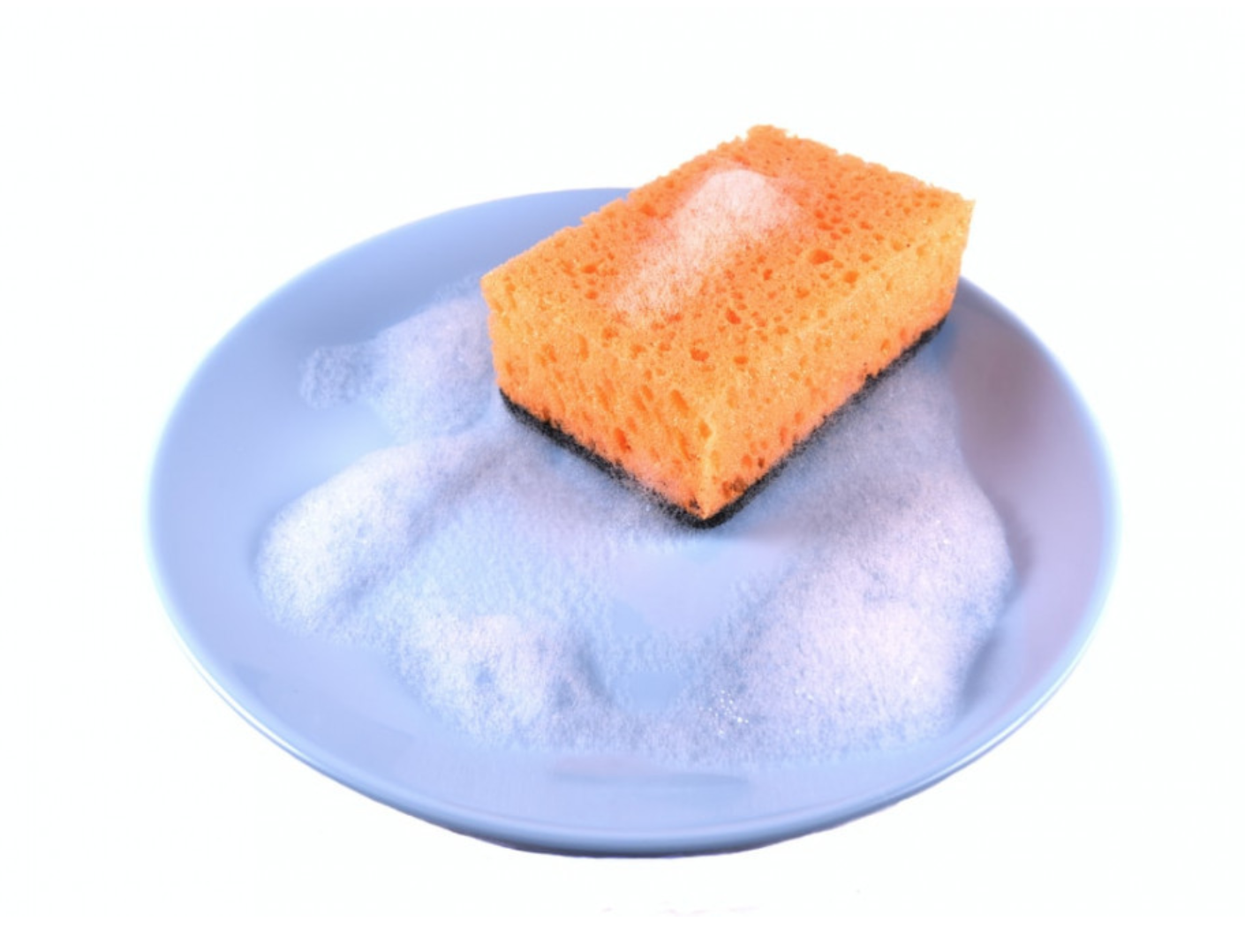 What Makes Kitchen Sponges Smell? - Sponge and dish