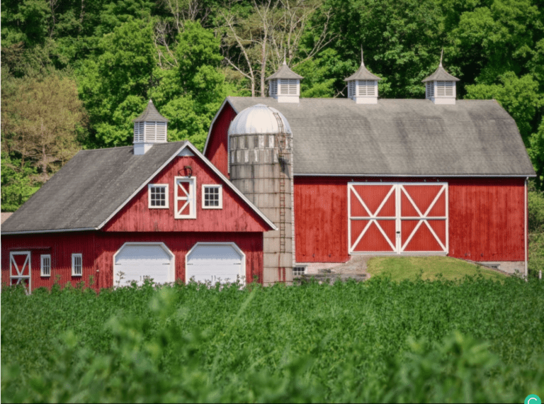 Why Are Barns Painted Red? - Red Barn